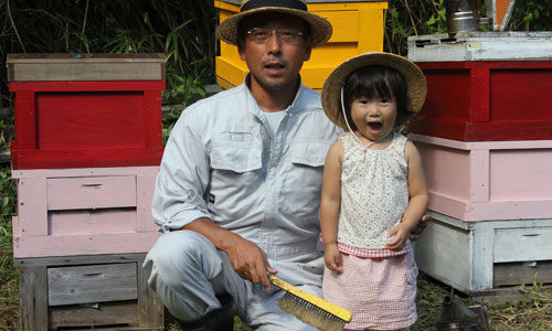 2012年秋の養蜂作業
