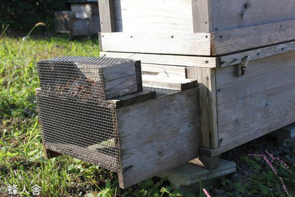 スズメバチ捕獲器