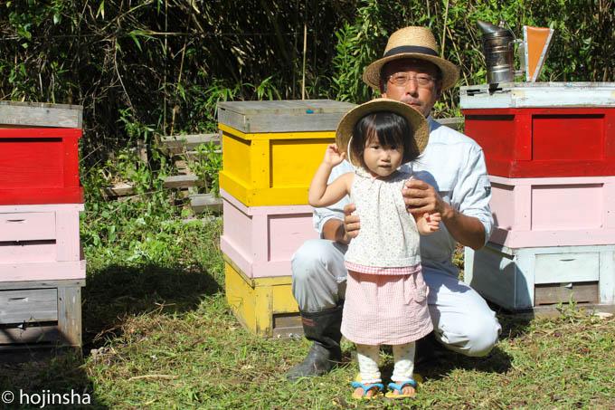 【西洋ミツバチの飼育方法】蜜蜂飼育届の提出方法とはちみつ販売時の保健所への届出について