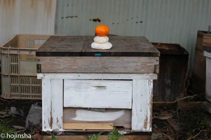 盗蜂で蜂群が全滅