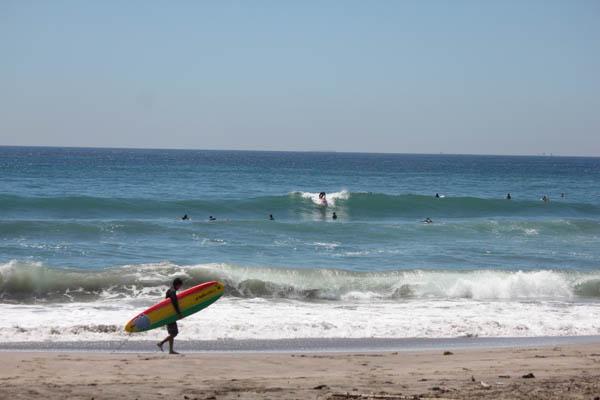 養蜂暑さ対策、週末の海は混む