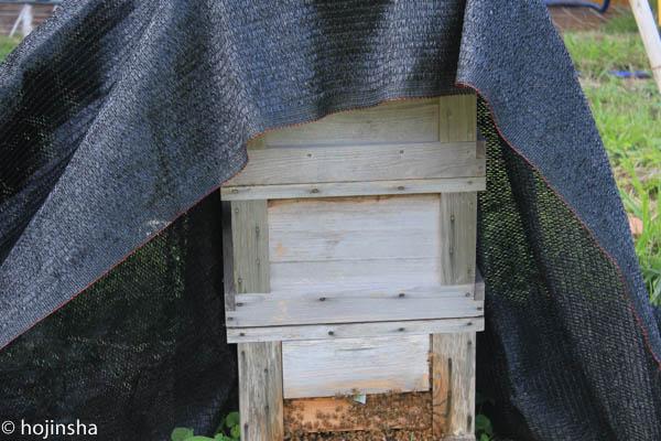 夏対策、巣箱に遮光ネットを掛ける