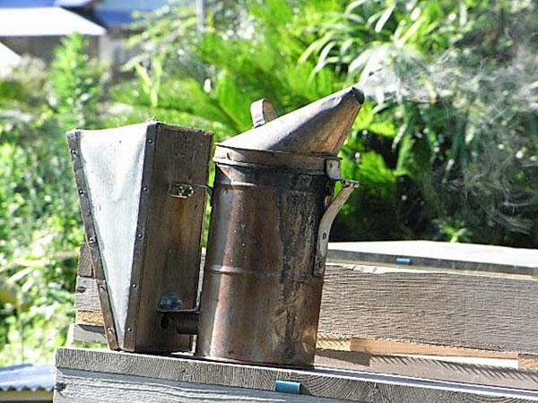 【西洋ミツバチの飼育方法】巣枠上を覆う布、薫煙器の材料