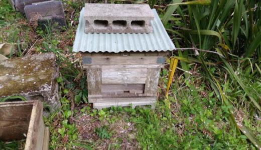 2018年春 日本ミツバチの待ち箱設置